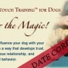 dogTrainings-400&#215;200 copy