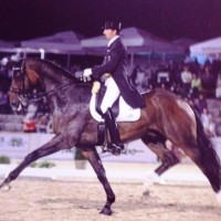 Grand Prix Dressage Horse Weltall and his rider Dodo Laugks.